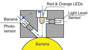 BananaRipnessSensorDrawing