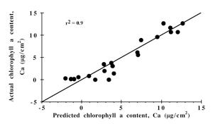 BananaSensorPerformanceGraph