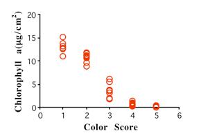 ChlorophyllA_ColorScoreGraph