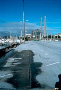 Along the west side of the Harbor Office parking lot, liquefaction caused minor cracking parallel to the water edge. Sand boiled to the surface along the cracks.