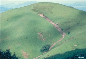 This flow slide in the hills north of Berkeley, California occurred in May 1983 during an intense rainfall. (Photo by Nick Sitar).